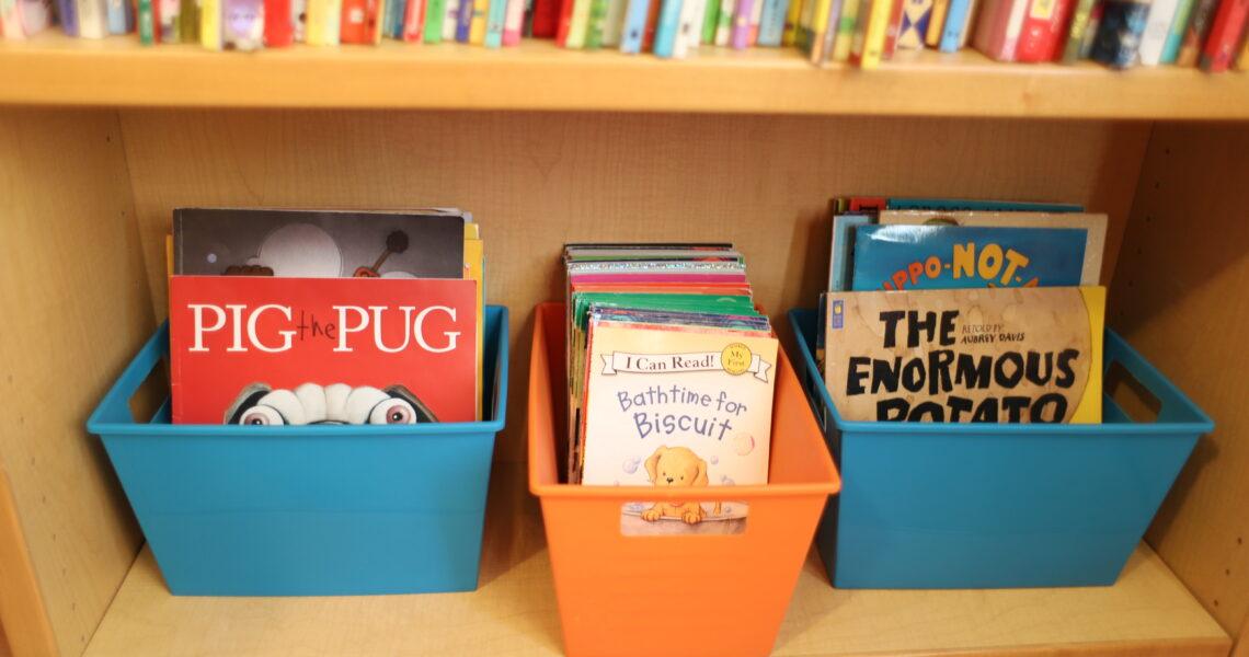 Paperback Picture Book Storage