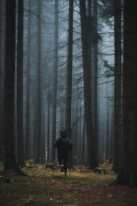 Picture of a boy running in a dark forest.